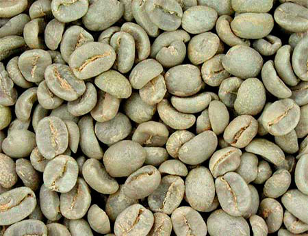 Dr. Oz and Green Coffee Bean Extract: Miracle Weight Loss Pill?